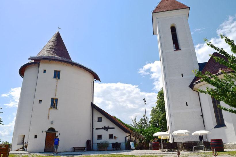 17 sehenswerte Orte in Kranj - Pungert