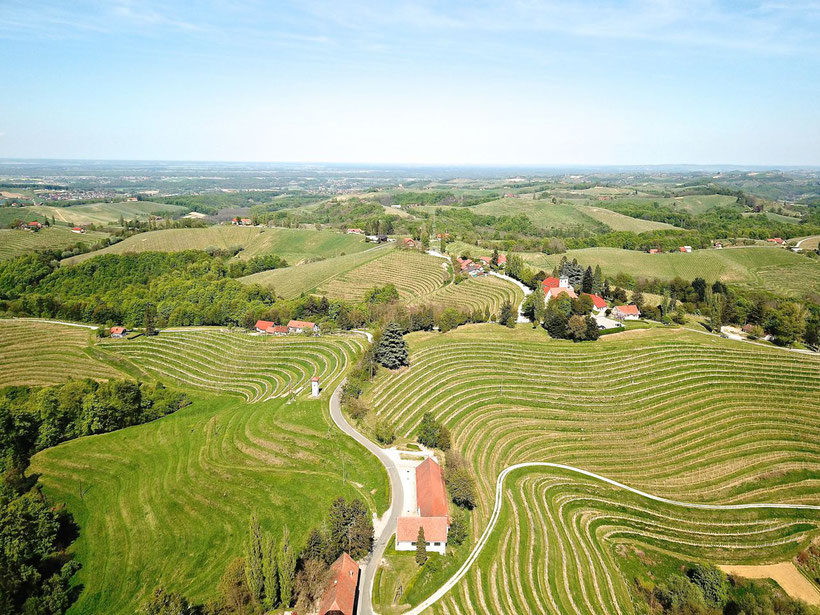 Jeruzalem - A Scenic Wine Region in Slovenia