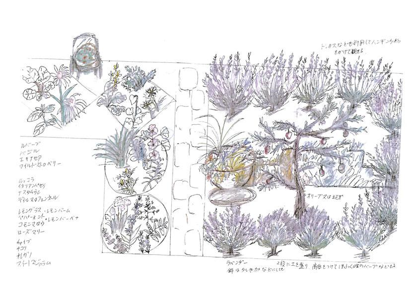 八千代道の駅 花壇完成予定図