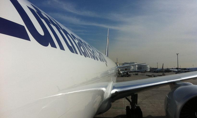 Aircraft B777 Lufthansa Cargo Frankfurt