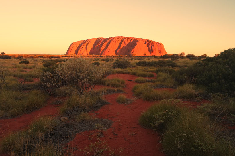 Ayers rock in the sunset light