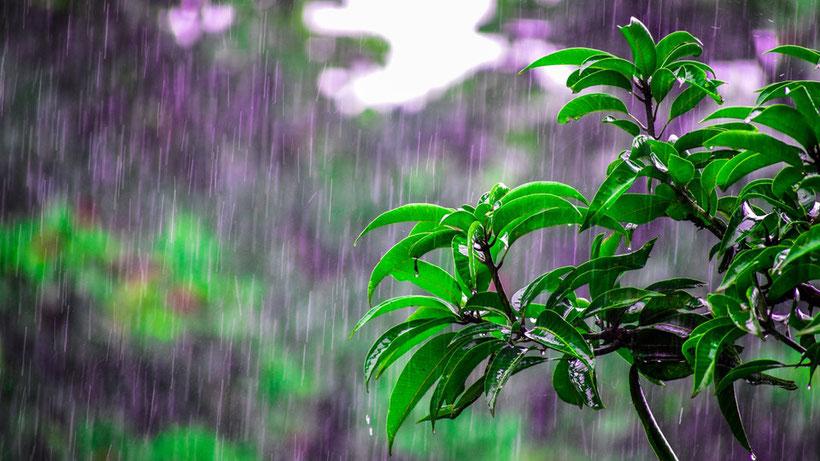 krabi was tun bei regen