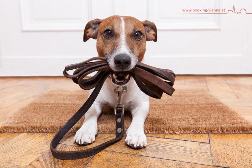 Die Haustiermesse Wien ist eine Messe für Haustiere und Haustierbedarf. Hotel Urania Wien günstig mit Hund buchen