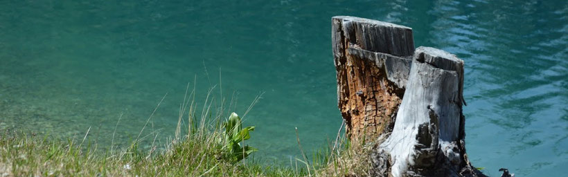 Ruhe, Erholung und Urlaub am Turnersee