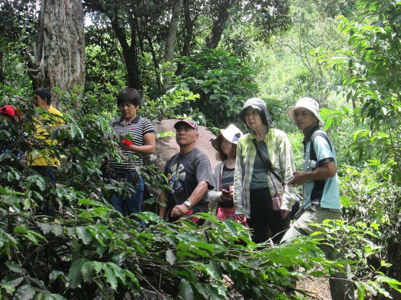 カバヤン町での農家同士の学びあいの研修の様子