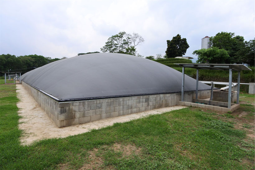 Covered lagoon digester - Aqualimpia - lagoon digester for chicken waste - poultry waste