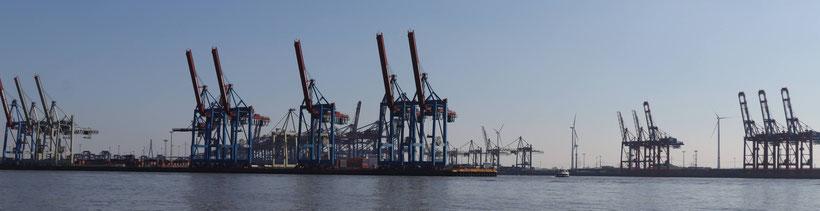 Der Buchhalter e.V. - Hafen Hamburg