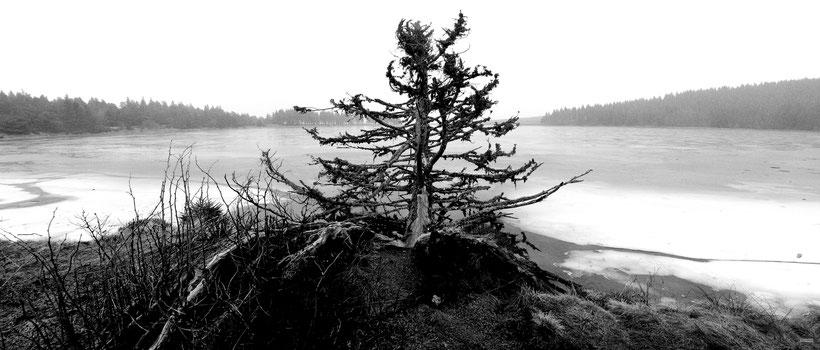lac serviere auvergne panoramique noir et blanc