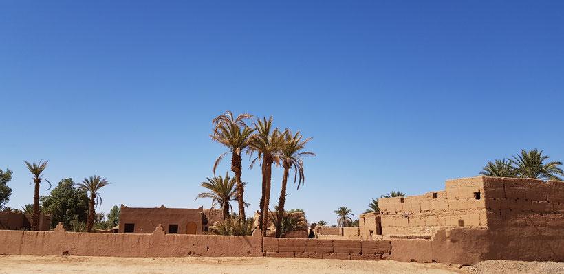 Eau dans le désert M'hamid El Ghizlane