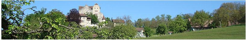 Wohngemeinschaft Casa Viva, betreutes Wohnen für Erwachsene im Aargau. Berufliche und soziale Integration.