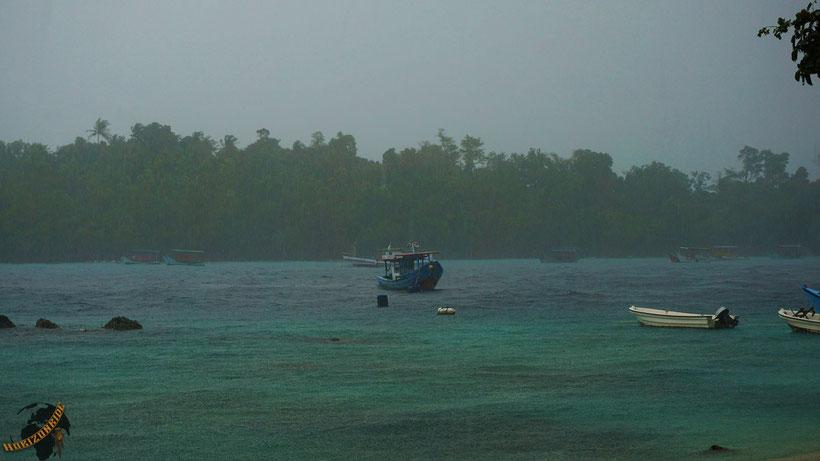 Südostasien ist so grün wie Kermit der Frosch - wegen des vielen Regens!