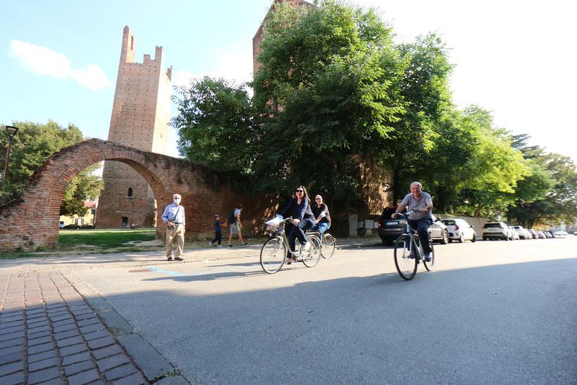 Assessore Merlo Comune di Rovigo