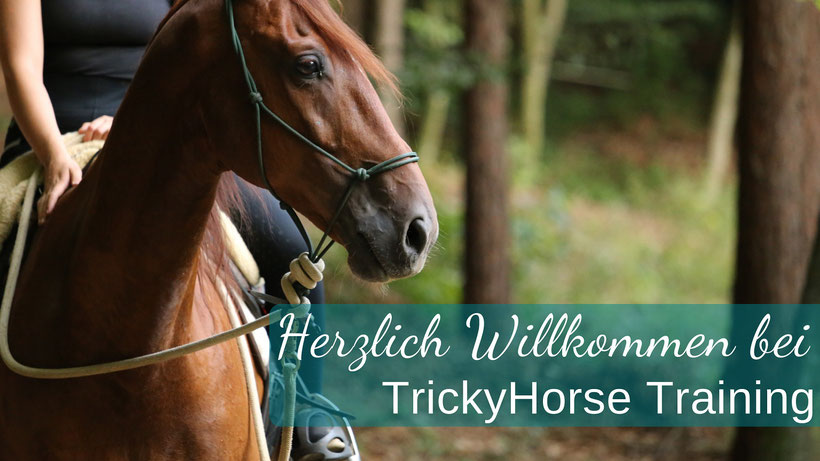 www.TrickyHorse.at