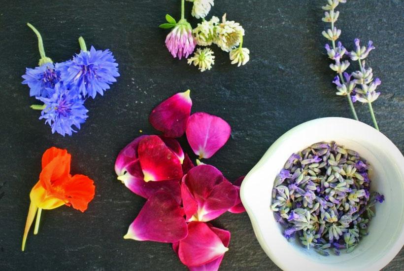 Rezepte für Kräuter, Blüten und Früchte - Juni und Juli