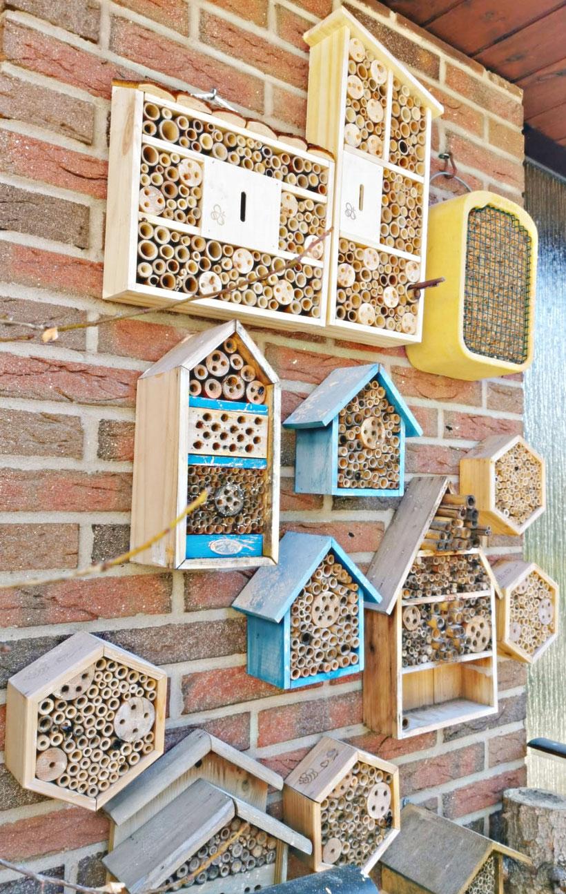 Wohnungs-Paradies für Insekten im Umland von Hannover. Foto Marc Wettering