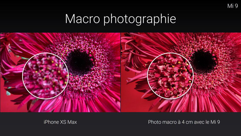 Comparatif photo entre le Xiaomi Mi 9 et l'iPhone XS Max
