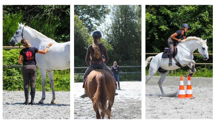 Reconnaissance parcours d'équitation