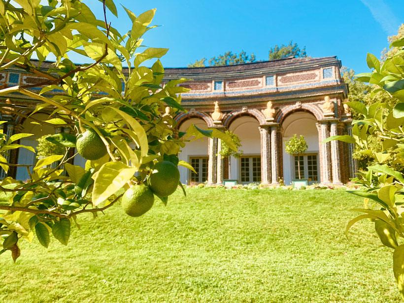 Die Eremitage in Bayreuth ist eine ab 1715 entstandene historische Parkanlage mit Wasserspielen und Bauwerken, die zu den Sehenswürdigkeiten der Stadt gehört. Dort befinden sich auch das sogenannte Alte Schloss, das Neue Schloss (