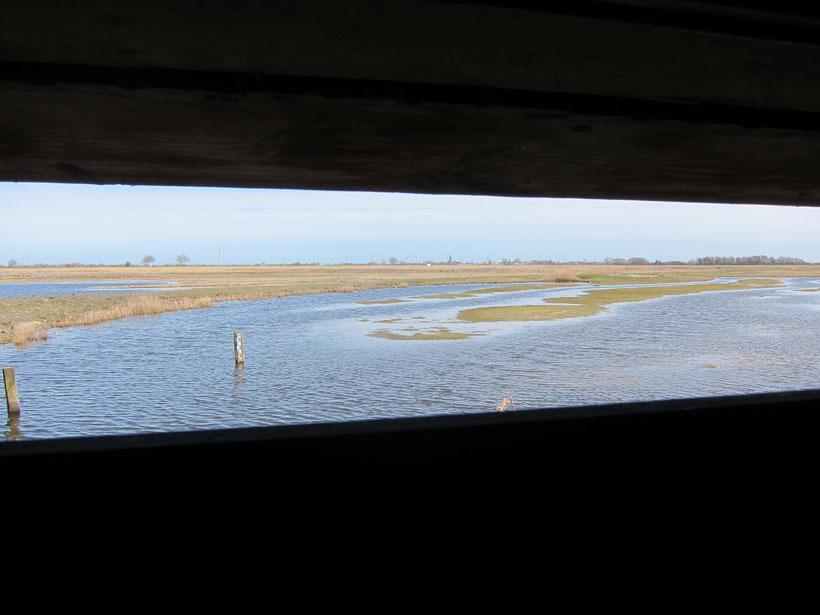 Blick aus einem Hide im Wasservogelreservat Wallnau