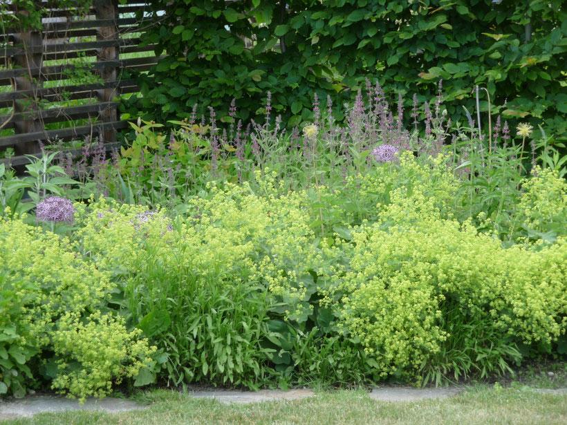 Blog garten raum energie gartengestaltung for Gartengestaltung app