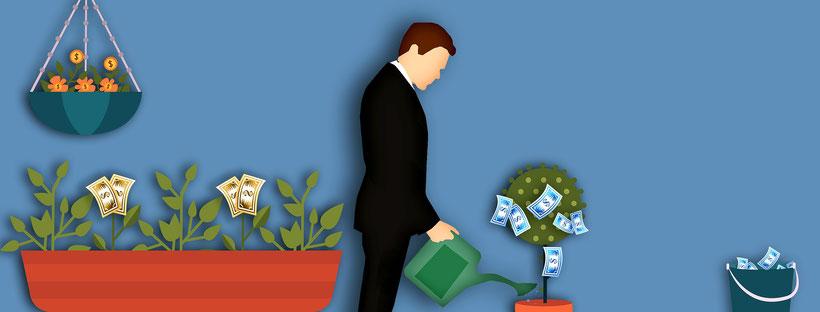 Man im Anzug gießt Pflanzen von denen Geld wächst; rechts unten steht ein Eimer voller gepflückten Geldscheine