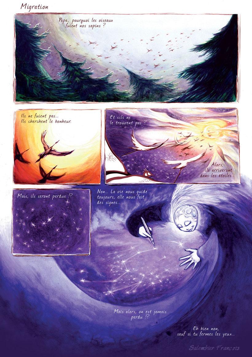 salembier-francois-illustrateur-auteur-de-bd-scénariste-freelance-couleur-aquarelle-cryon-couleurs-étoiles-étoile-encres-encre-oiseaux-sauvage-frai-fraicheur-rêverie-rêve-reve-sapin-envolée-migration-oiseaux-bonheur-vie-signes-guide