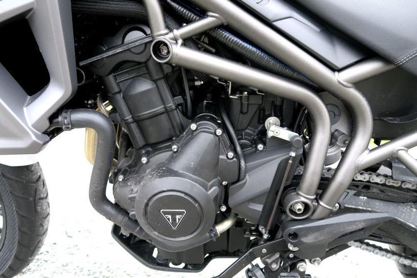 Le 3 cylindres du Triumph Tiger 800 XR