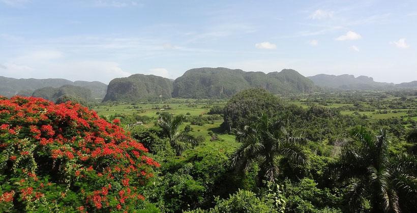 Aussicht auf das Viñales Tal, Kuba