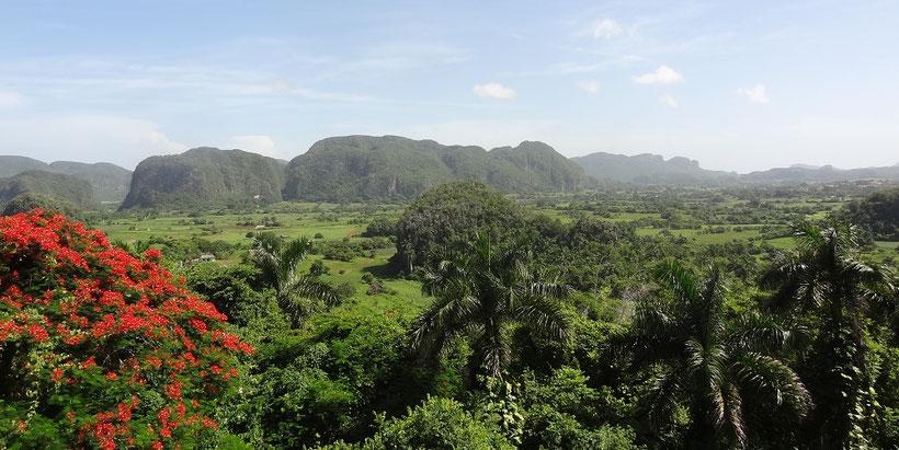 Ausblick auf das Viñales Tal in Kuba