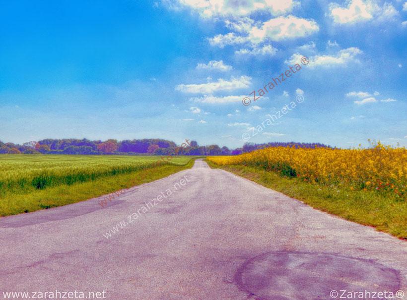 Künstlerische Fotos mit Feldweg auf dem Land im Impressionismus wie gemalt
