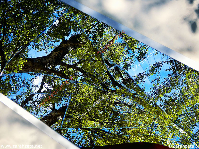 Zerbrochener Spiegel mit Natur als Spiegelbild