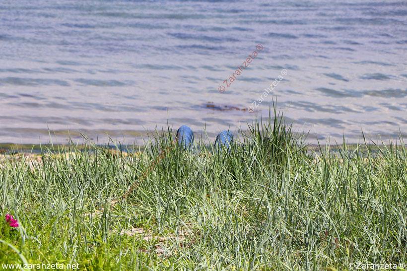 Zarahzetas Sommerblog mit Relaxen am Strand