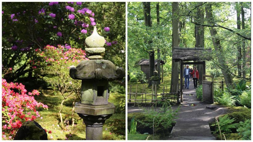 Japanischer Garten - Den Haag