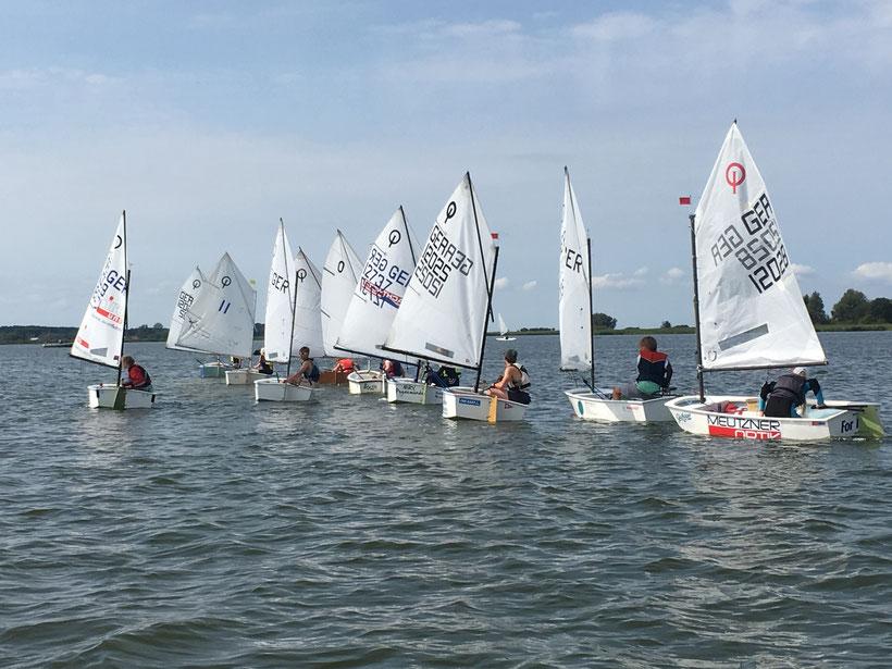 31 Starter zählte die Bootsklasse Optimist