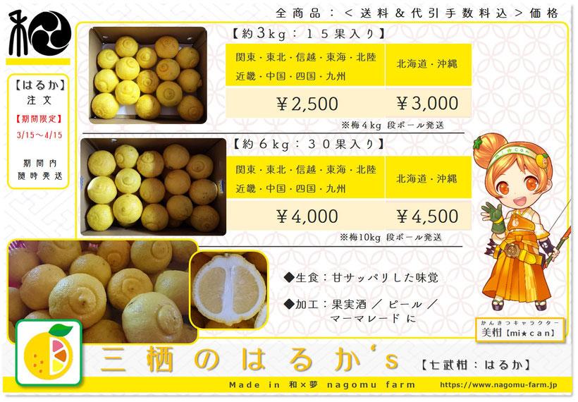三栖のはるか's【七武柑:はるか】2019年産 箱売り価格表 和×夢 nagomu farm