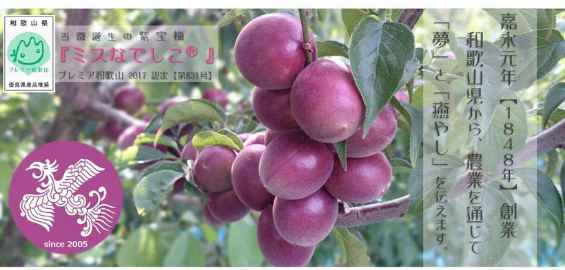 和×夢 nagomu farmホームページ【トップ画像】