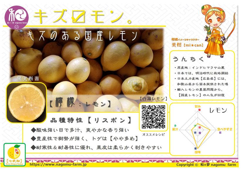 キズ☑モン。【キズのある国産レモン】 和×夢 nagomu farm