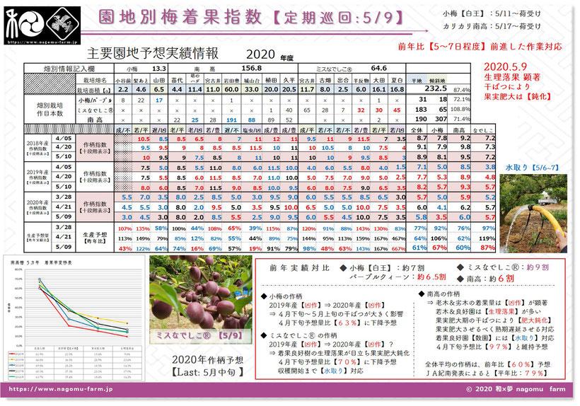 2020年産 梅作柄予想 園地巡回【3.28】 和×夢 nagomu farm