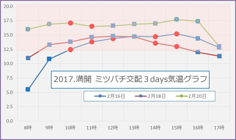 2017満開 蜜蜂交配3days 気温グラフ 和×夢 nagomu farm