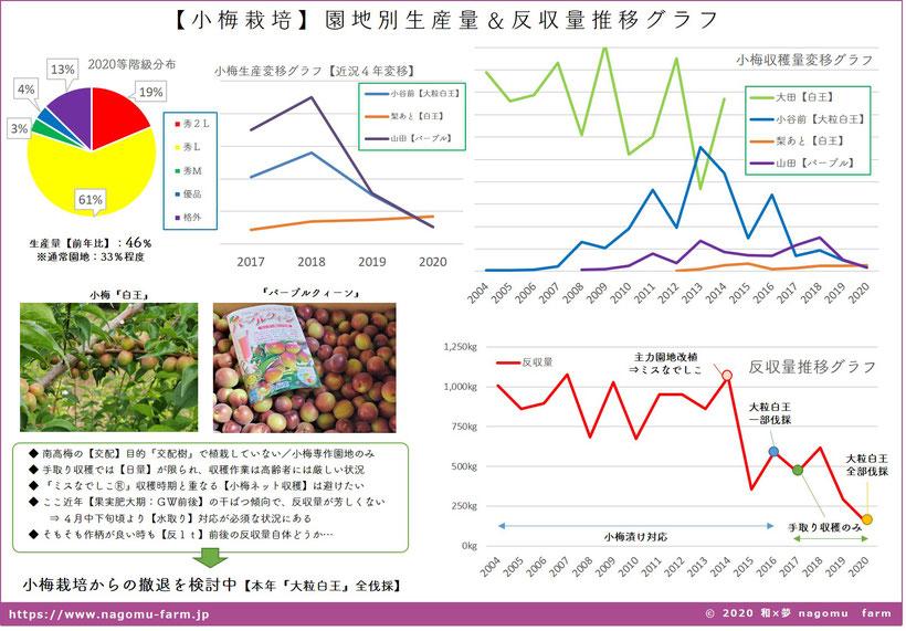 小梅 園地別生産量&反収量推移グラフ 和×夢 nagomu farm