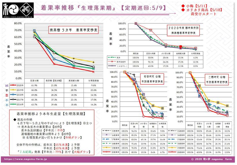 2020年産 南高梅 着果率推移【5/9 園地巡回】 和×夢 nagomu farm