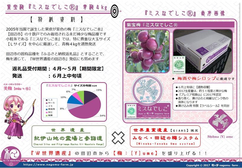 ふるさと納税返礼品 2018 紫宝梅『ミスなでしこⓇ』青梅4kg 詳細説明 和×夢 nagomu farm