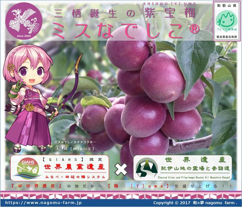 紫宝梅『ミスなでしこⓇ』POP 和×夢 nagomu farm