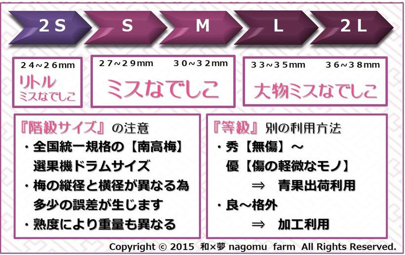 紫宝梅『ミスなでしこⓇ』 等階級表