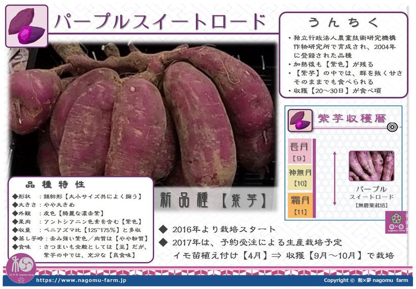 パープルスイートロード【紫芋】 べっぴんさん。 和×夢 nagomu farm