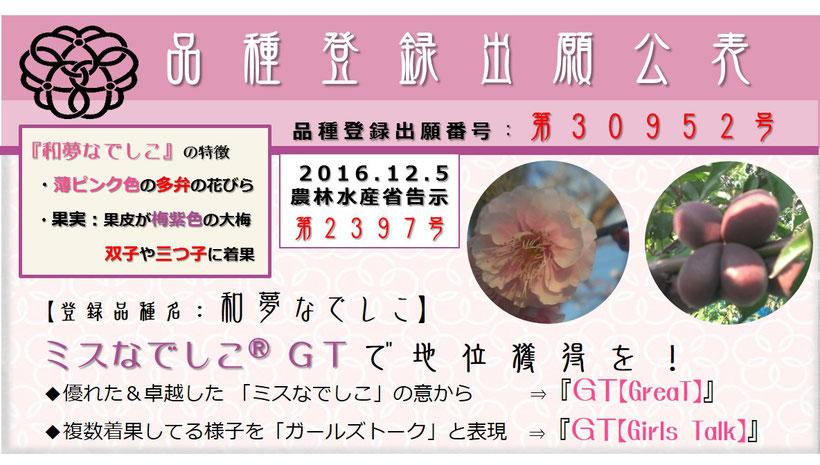 品種登録出願公表【和夢なでしこ】   和×夢 nagomu farm