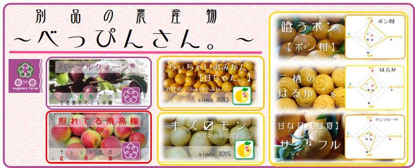 別品の農産物『べっぴんさん。』 和×夢 nagomu farm