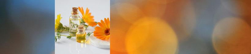 EMEA Heilpraxis, Praxis für ganzheitliche Therapie und Naturheilkunde empfiehlt Kräuter, Tinkturen und DMSO aus dem Calendula Kräutergarten. Ausführliche Beratung bei Anja Wendt-Ludin, Heilpraktikerin und Physiotherapeutin, Region/Raum Lörrach