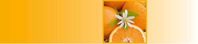 Ernährungsberatung in Lörrach. Beratung und Kurse für gesunde Ernährung, natürliche Ergänzungsmittel, Pflanzenheilkunde, Schüsslersalze. EMEA Praxis für alternative Heilmethoden, Heilpraktikerin Anja Wendt-Ludin