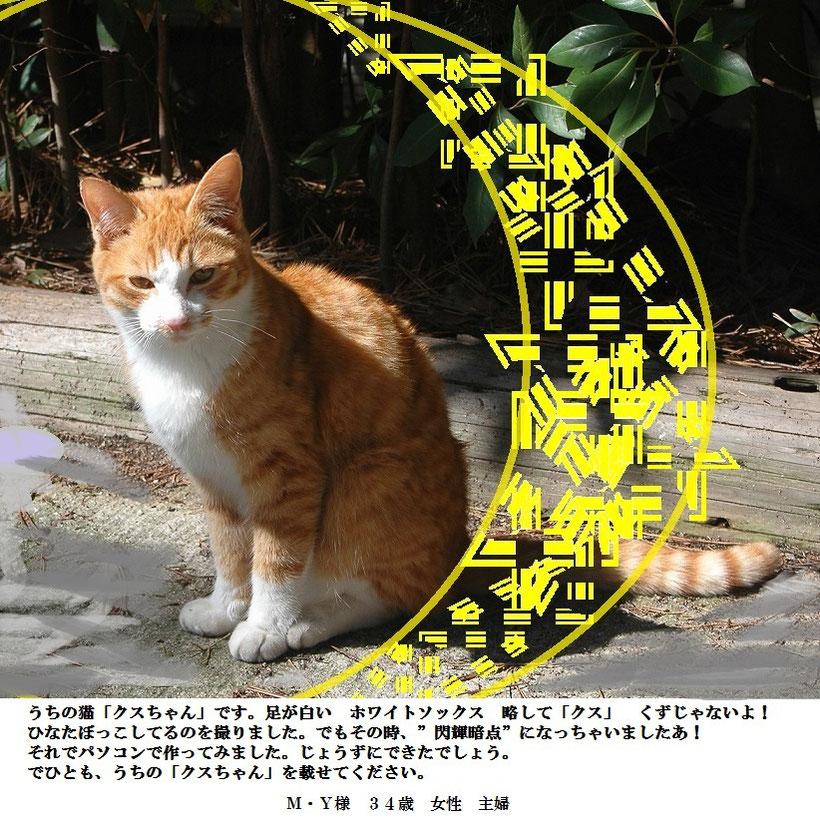 お客様から送られて来た、閃輝暗点のイメージ画像です。メッセージも添えられています。